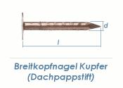 2,8 x 25mm Dachpappstifte Kupfer (100g = ca. 71Stk.)
