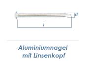 2,8 x 45mm Aluminiumnägel Linsenkopf  (10 Stk.)