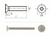 M6 x 40mm Senkschrauben TX ISO14581 Edelstahl A2  (10 Stk.)