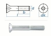 M16 x 100mm Senkschrauben DIN7991 Stahl verzinkt FKL 8.8...