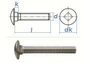 M5 x 25mm Torbandschrauben DIN603 Edelstahl A2 (10 Stk.)