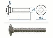 M8 x 25mm Torbandschrauben DIN603 Edelstahl A2 (10 Stk.)
